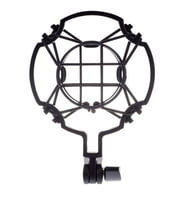 Mikrofon spin