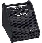 Roland PM-10 Drum Monitor System