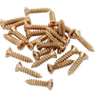 Fender Pickguard Screws Gold