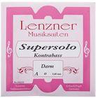 Lenzner Gut A String1313D