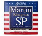 MSP4250 Bluegrass Martin Guitars