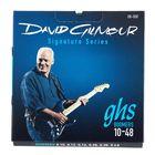 GHS David Gilmour String Set F