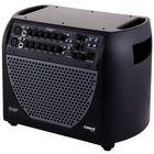Acoustic Image Corus 613-GA-2-Plus