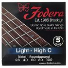 Fodera 5-String High C Set Light N