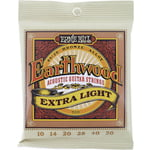 Ernie Ball 2006 Earthwood Bronze