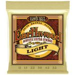 Ernie Ball 2004 Earthwood Bronze