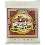 Ernie Ball 2003 Earthwood Bronze