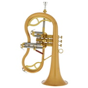 "Carol Brass CFL-7200-GSS-Bb-SL ""Legendary"""