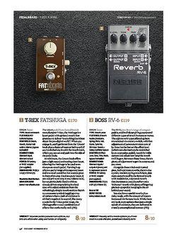 Guitarist Boss RV-6