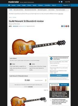 Guild Bluesbird