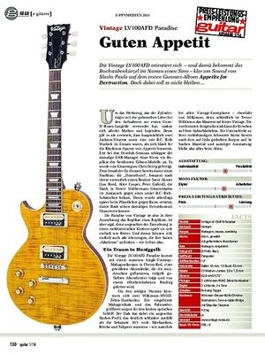 Guitar gear e-gitarre: Vintage LV100AFD Paradise