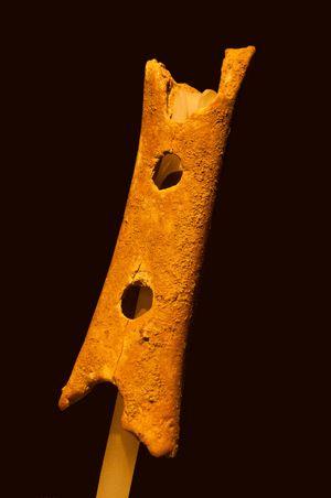 In einer Höhle von Divje Babe (Slovenien) ausgegrabenes Fundstück einer Knochenflöte mit einem Alter von ca. 20.000 Jahren.