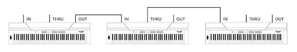 MIDI IN / MIDI OUT / MIDI THRU