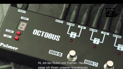 Palmer Octobus